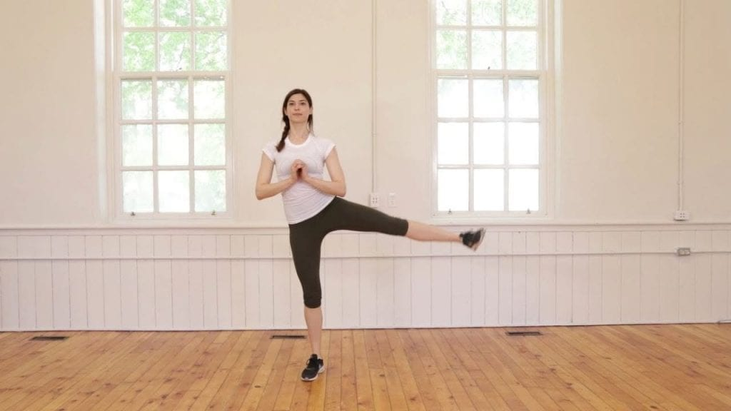 Abductor Leg Lift Exercise - No Equipment Workout